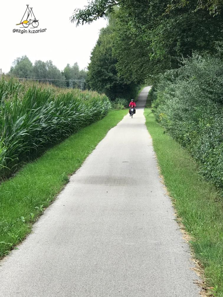 Yeşillikler içinde Bisiklet Yolu